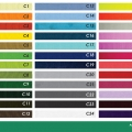 Cintas Porta credenciales Color